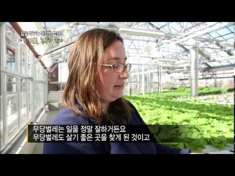 Sky Vegetables & South Korea EBS