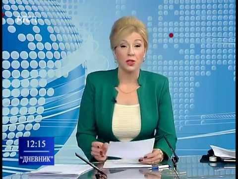 'Dnevnik' - Vulin