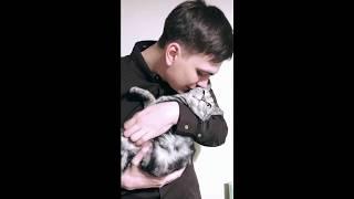 Слава КПСС - Что ты будешь делать, когда тебя схватят, глупый кот