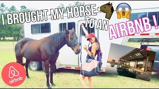I BROUGHT MY HORSE TO AN AIRBNB !