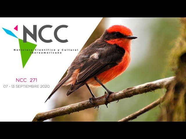 Noticiero Científico y Cultural Iberoamericano, emisión 271. 07 al 13 de Septiembre 2020.