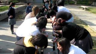 Clase de Pociones / Comunidad Rowling Chile Thumbnail