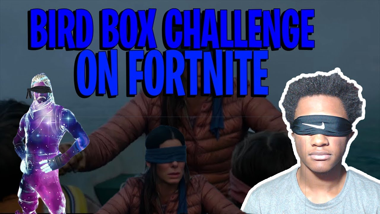 Download BIRD BOX CHALLENGE ON FORTNITE! FUNNY FOTNITE / BIRD BOX GAMEPLAY!