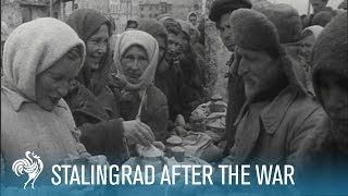 Stalingrad After World War II (1947) | British Pathé