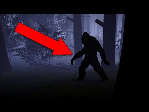 I FOUND BIGFOOT!! (Finding Bigfoot)
