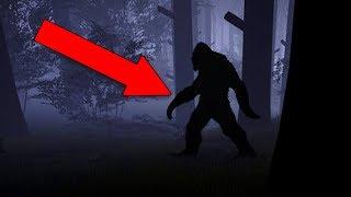 I FOUND BIGFOOT!! (Finding Bigfoot)
