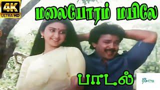 மலையோரம் மயிலே - Malayoram Mayile || Super Hit Tamil Song
