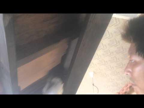 ロックペイント オイルステイン 名古屋市の外壁塗装・塗り替えならレインボーペイント