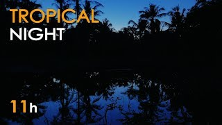 Tropical Night - Nature Sounds for Sleeping - Frogs & Crickets - 11 Hours Long - Relaxing HD Video