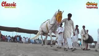 90/Best Horse Dance Punjab Meerik Sial Jhang 2018/ Bani Syed Qalandar Sultan