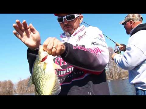 Repeat reelfoot lake fishing report guide call 731 446 5245 reelfoot