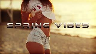 Spring Vibes   House Mix By DJ Ivan XL 2019