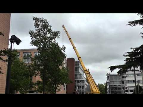 Crane at The Faculty of History, Cambridge 4