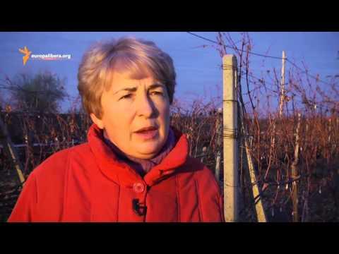 Pur și Simplu: Business Woman în Moldova