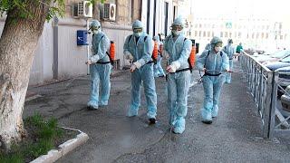 Хлоркой по коронавирусу… и аллергикам // Новости «НТН24»