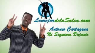 Antonio Cartagena - Ni siquiera dejaste