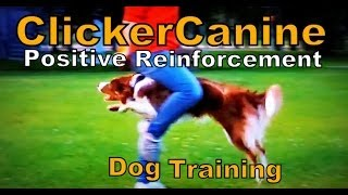 New: Clickercanine - Positive Reinforcement Dog Training