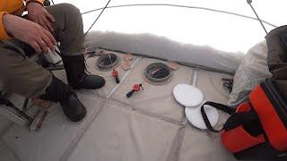 Зимняя РЫБАЛКА на о Балхаш Подводная сьемка Вобла Судак