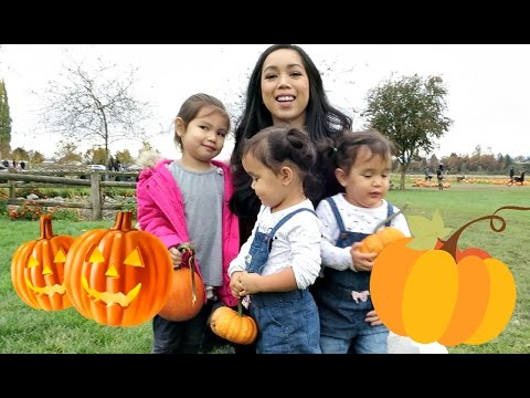 PUMPKIN PATCH 2016! - October 19, 2016 - ItsJudysLife Vlogs