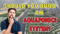 17 Benefits of Aquaponics - SHOULD YOU BUILD A SYSTEM?