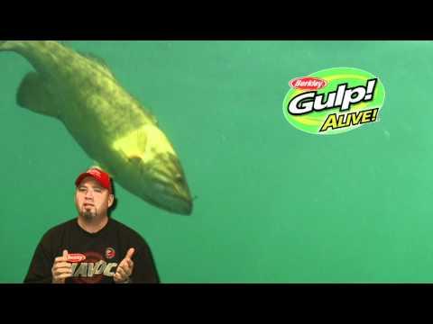 Fishing Edge #10: Berkley Gulp! Alive Leech - YouTube