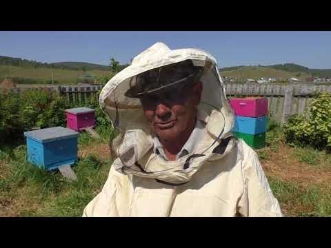 Смотреть Бортники Башкирии  Белорецкий район, деревня Исмакаево, 2017 год онлайн