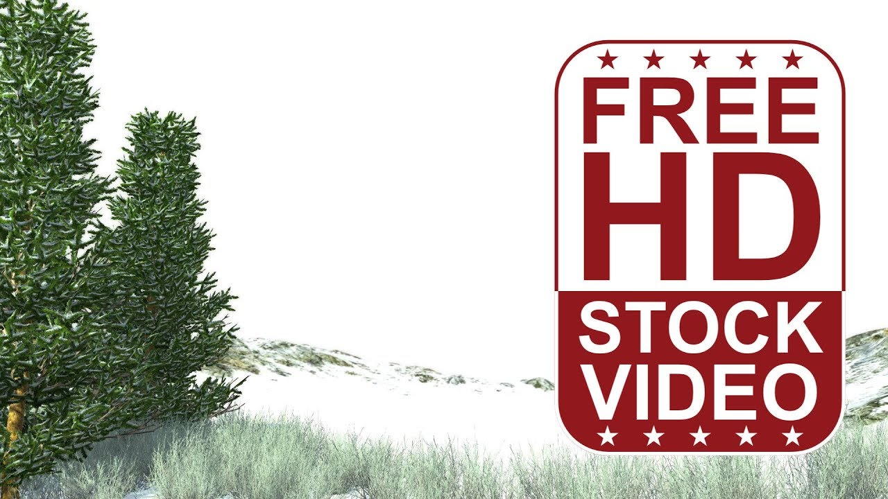 Free hd video backgrounds 3d animated fraser fir tree and rough free hd video backgrounds 3d animated fraser fir tree and rough grass with wind effect in winter thecheapjerseys