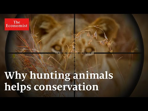 Trophy hunting: how it can protect Africa's wildlife | The Economist
