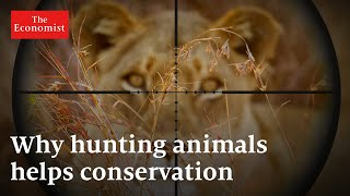 Why hunting animals could be good for conservation | The Economist