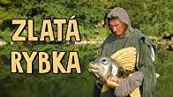 Smejko a Tanculienka - Zlatá rybka (rozprávka)