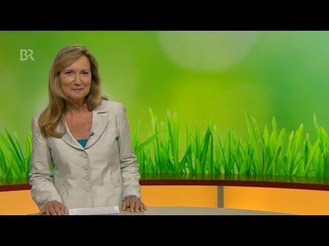 grasscalm_gmbh_video_unternehmen_präsentation