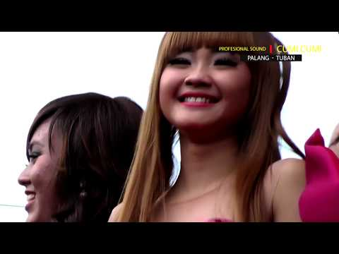 DESPACITO ALL ARTIS ADELLA 2017 Prambon   Tuban