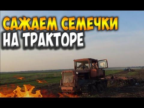 Слушать песню Hatred - Трактор Беларусь