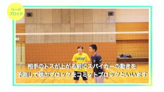 バレーボールブロック技術/リードブロック、コミットブロック【バレCH#76】