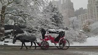 New York City Christmas Snow 2017