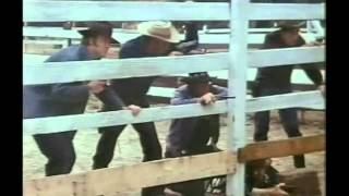 Abar, the First Black Superman (1977) - Deadeye Dick...Deadeye Dick