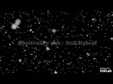 Shortvalley Dub - DnB Hybrid