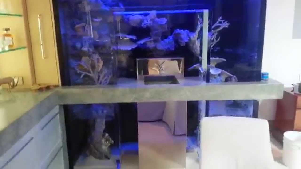 Alcove Aquarium Sunset Beach residence