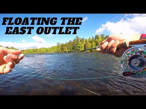 Maine Fly Fishing | Fly Fishing The East Outlet For Brook Trout