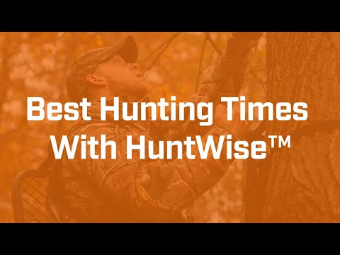 Find The Best Hunting Times Using HuntWise