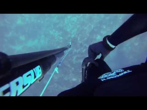 Chasse sous marine en méditérannée-Oran