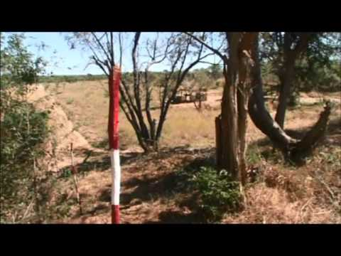 Angola Battlefields