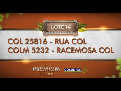 LOTE 14   COL 25816, COLM 5232