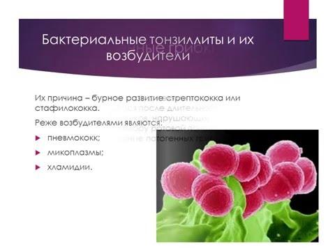 Стафилококк у детей: фото заболевания, что это за болезнь