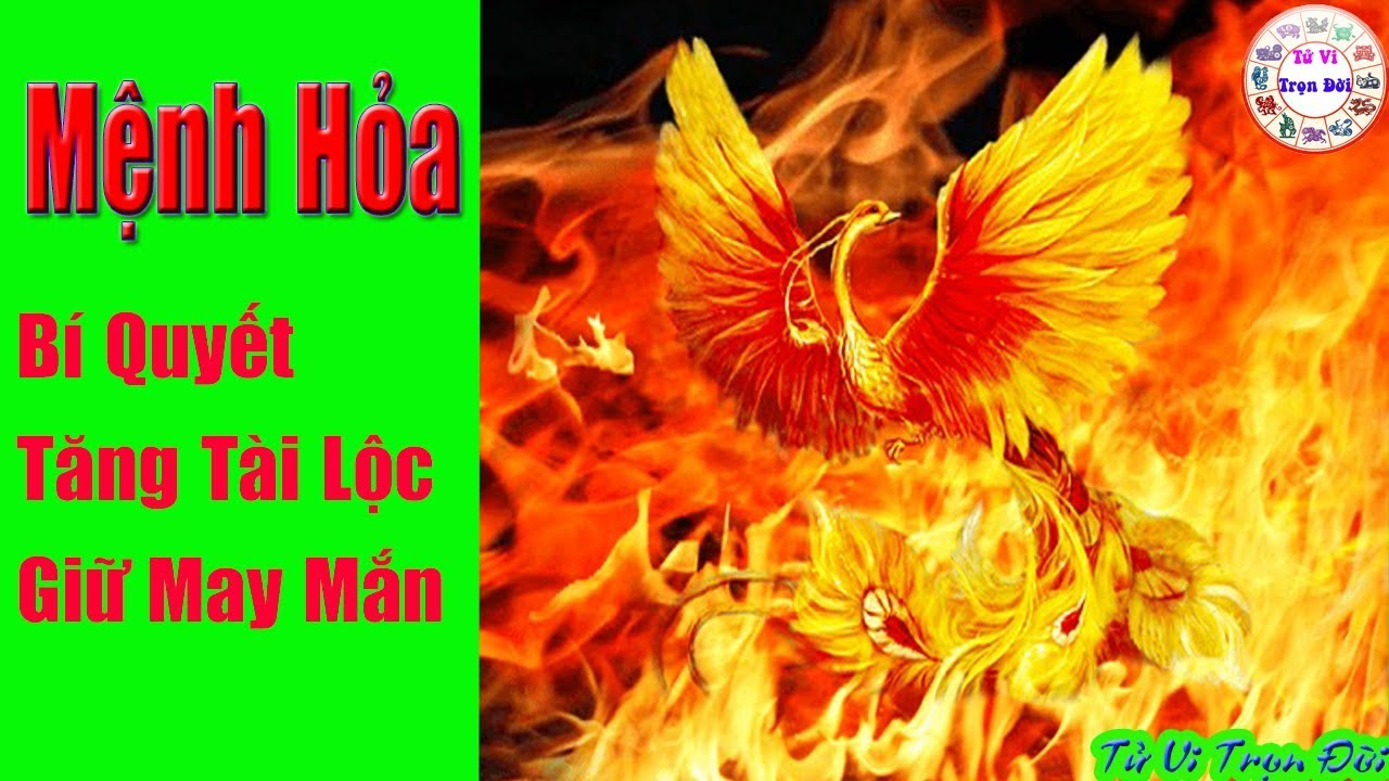 Mệnh Hỏa – Bí quyết Tăng TÀI LỘC, giữ sự May Mắn, Thịnh Vượng quanh năm| Tử Vi Trọn Đời | Bao quát các tài liệu liên quan hình xăm hợp tuổi ất hợi chuẩn nhất
