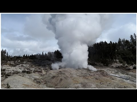 Yellowstone's Steamboat Geyser erupts for 5th time this year