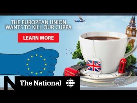 First look at Brexit campaign ads