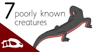 7 poorly known, but interesting fossil creatures