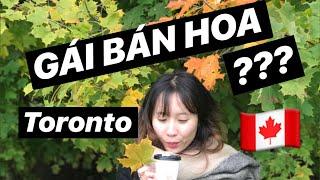 Bán Hoa Ở Toronto | Việc Làm Thêm Cho Du Học Sinh (P1) | Du Học Canada 🇨🇦