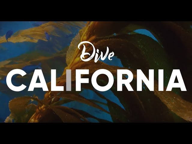Scuba Diving in California